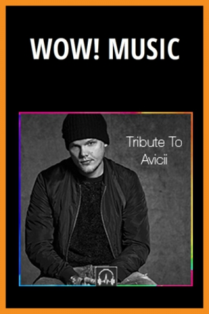 Tribute to Avicii - WOW! MUSIC